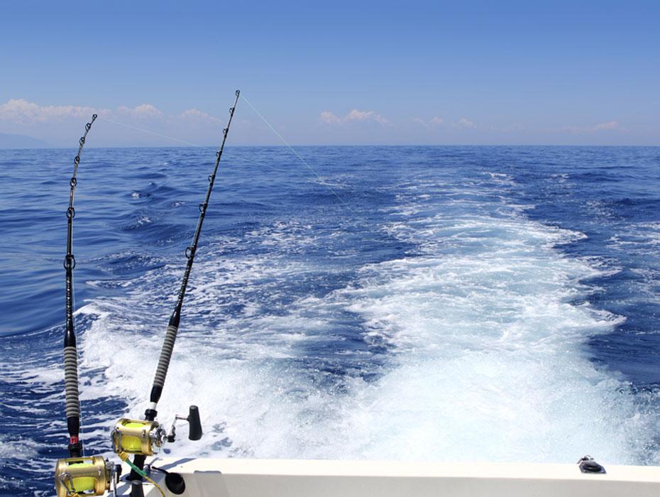 gallery-justfishing